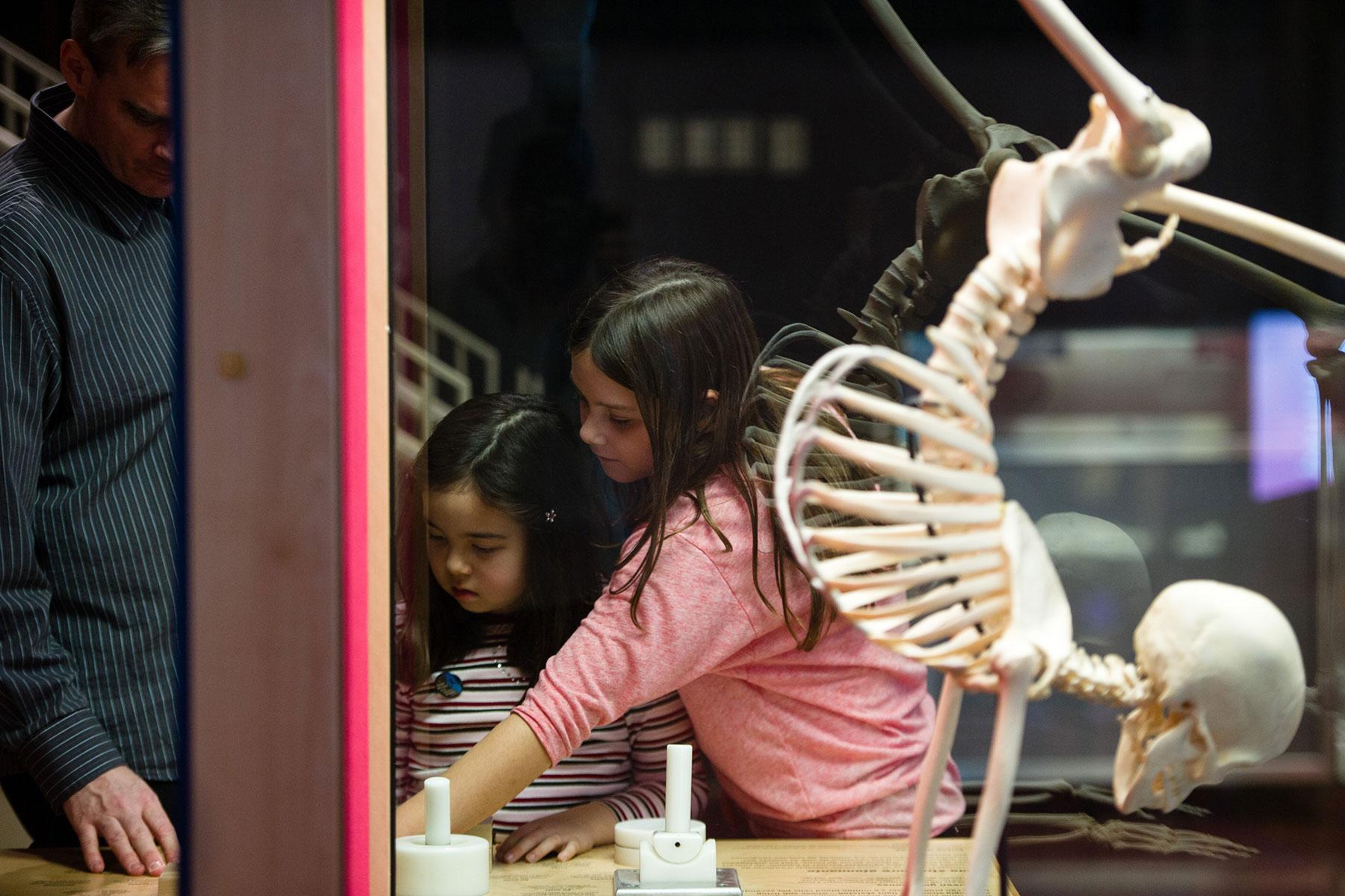 Children interacting with the exhibit